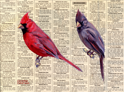 Perfect Pair - Cardinals, oil on newspaper on panel, 2013